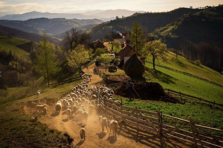 20 de imagini din frumoasa și fascinanta Românie